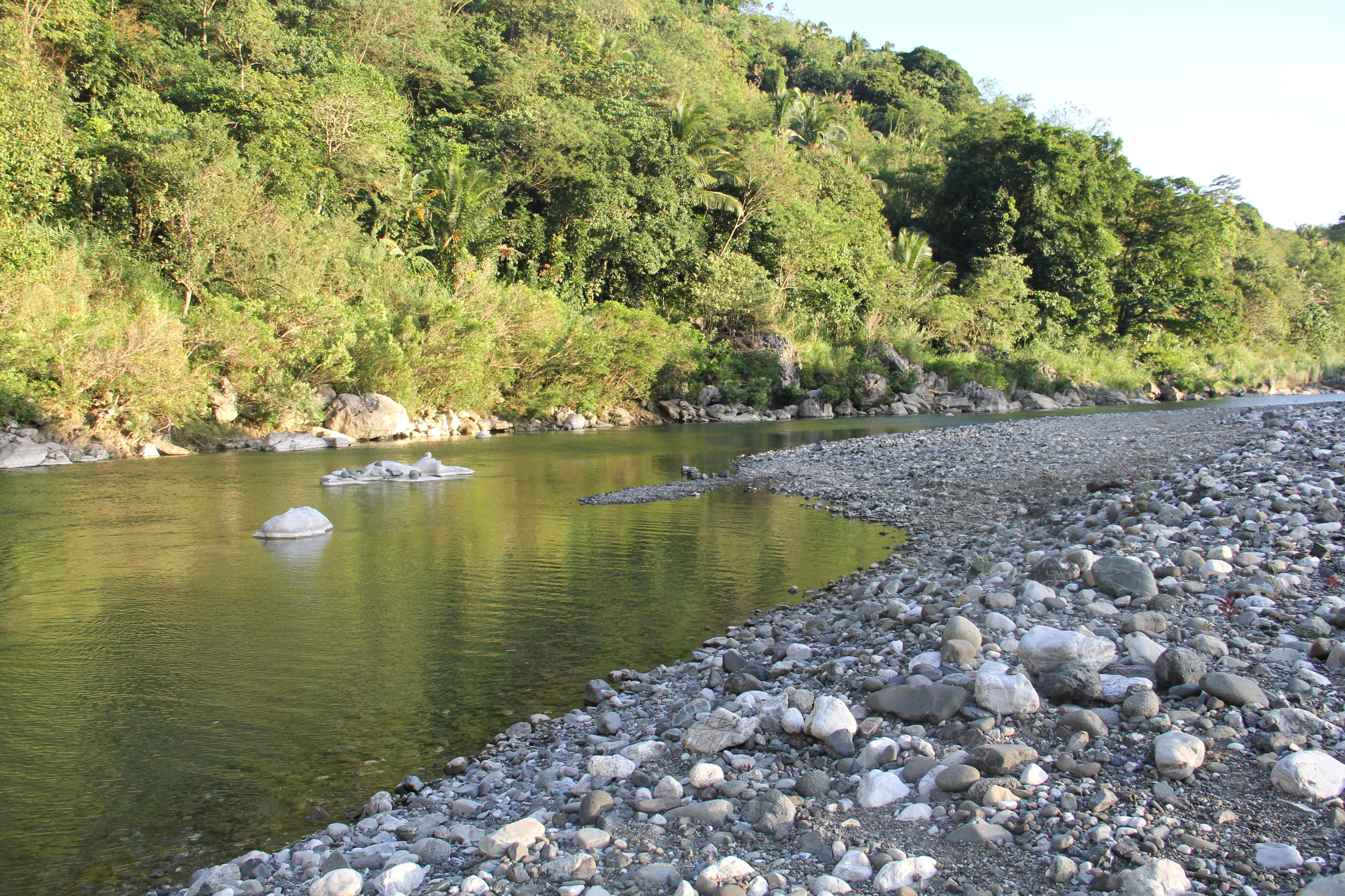 Camping 2014: Rediscovering Nature