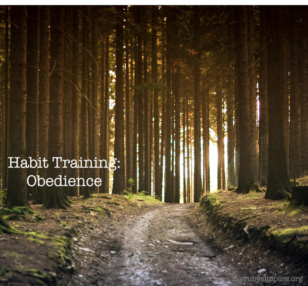 Habit Training: Obedience